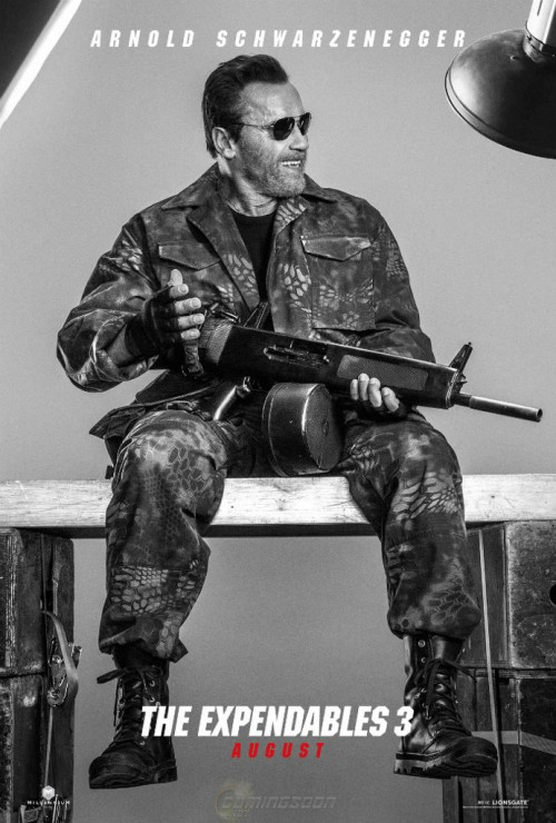 arnold-schwarzenneger-expendables-3