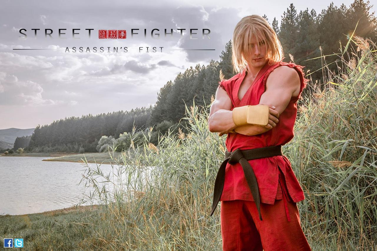 streetfighterassassinsfistken