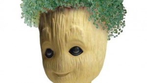 SDCC-Groot-Chia-00__scaled_600